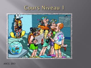 Cours Niveau  1