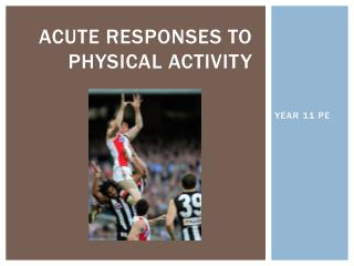 Acute responses to physical activity