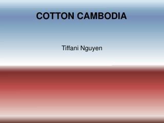 COTTON CAMBODIA