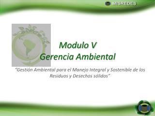 Modulo V Gerencia Ambiental