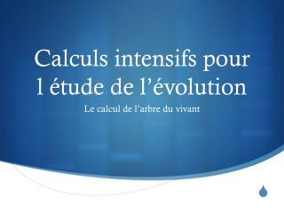 Calculs intensifs pour  l étude de l'évolution