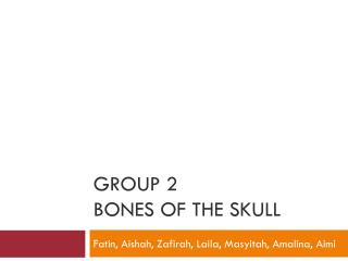 Group 2 Bones of the skull