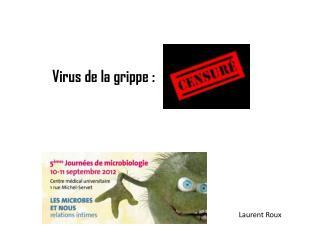 Virus de la grippe :