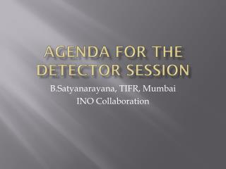 Agenda for the Detector Session
