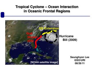 Tropical Cyclone – Ocean Interaction in Oceanic Frontal Regions