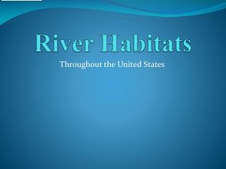 River Habitats
