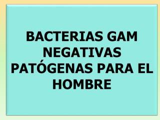 BACTERIAS GAM NEGATIVAS PATÓGENAS PARA EL HOMBRE