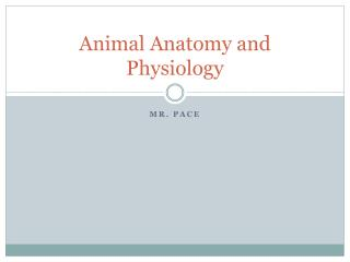 Animal Anatomy and Physiology