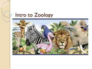 Intro to Zoology
