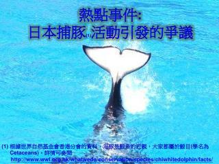 熱點事件 : 日本捕豚 (1) 活動引發的爭議
