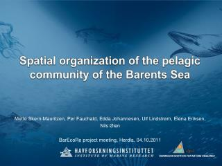 Spatial organization of the pelagic  community of the Barents Sea