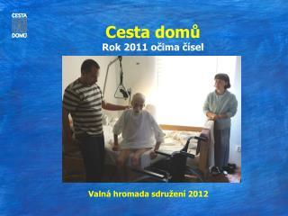 Cesta domů Rok 2011 očima čísel