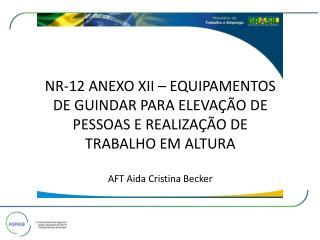 DOU 24 de dezembro 2010 MINISTÉRIO DO TRABALHO E EMPREGO SECRETARIA DE INSPEÇÃO DO TRABALHO