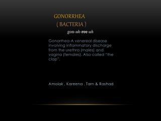 Gonorrhea   ( Bacteria )
