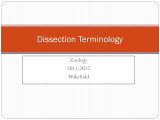 Dissection Terminology
