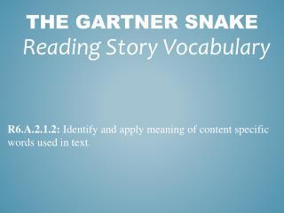 The Gartner Snake