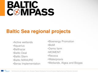 Baltic Sea regional  projects