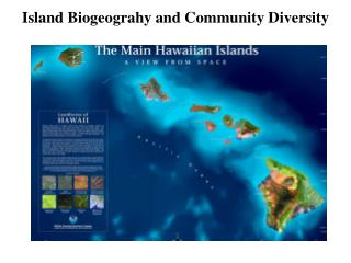 Island Biogeograhy and Community Diversity