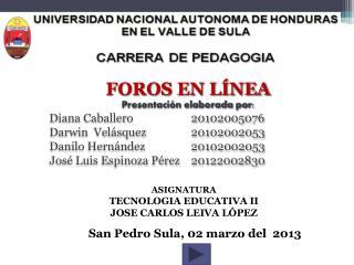 FOROS EN LÍNEA Presentación elaborada por: Diana Caballero  20102005076