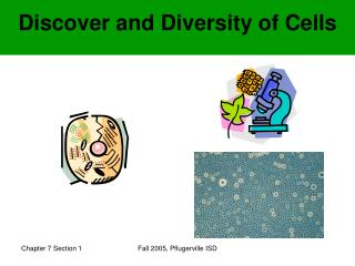 Discover and Diversity of Cells