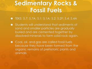 Sedimentary Rocks & Fossil Fuels
