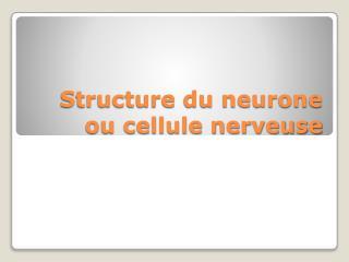 Structure du neurone ou cellule nerveuse