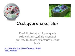 C'est  quoi  une  cellule?