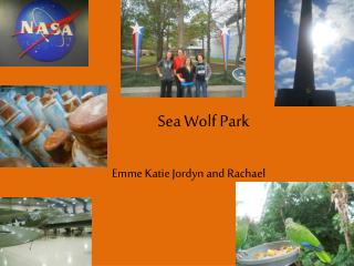 Sea Wolf Park