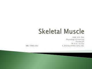 Skeletal Muscle