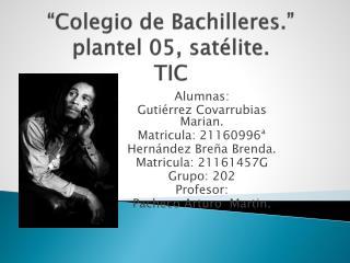 """Colegio de Bachilleres."" plantel 05, satélite. TIC"