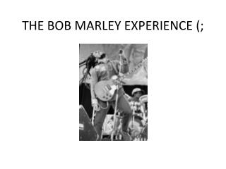 THE BOB MARLEY EXPERIENCE (;