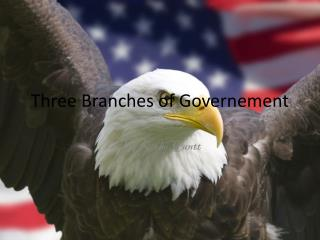 Three Branches of  G overnement