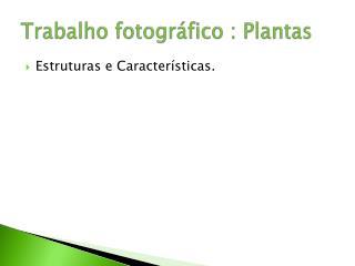 Trabalho fotográfico : Plantas