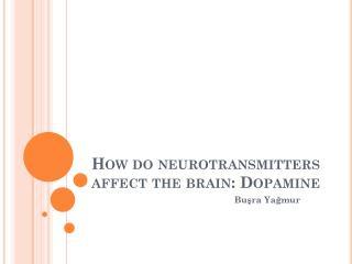 How  do  neurotransmitters affect the brain : Dopamine