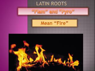 Latin  Roots