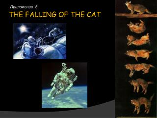 THE FALLING OF THE CAT