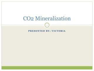 CO2 Mineralization