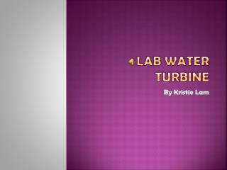 Lab water turbine