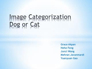 Image Categorization Dog or Cat