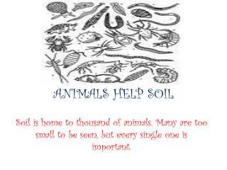 ANIMALS HELP SOIL