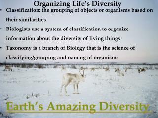Organizing Life�s Diversity