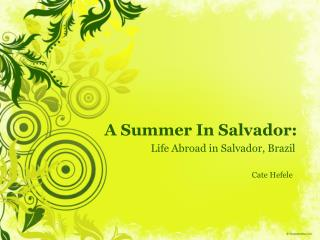 A Summer In Salvador: