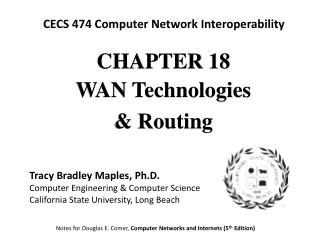 CHAPTE R 18 WAN Technologies  & Routing