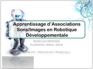 Bérenger BRAMAS FLOWERS - INRIA - 2009 ISIMA F2 – Master opt. Robotique