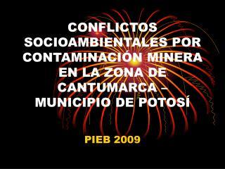 CONFLICTOS SOCIOAMBIENTALES POR CONTAMINACI N MINERA EN LA ZONA DE CANTUMARCA   MUNICIPIO DE POTOS