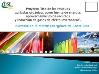 Giovanni Castillo P. Dirección Sectorial de Energía Ministerio de Ambiente y Energía