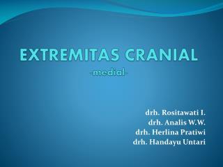 EXTREMITAS CRANIAL -medial-