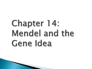 Chapter 14:  Mendel and the Gene Idea
