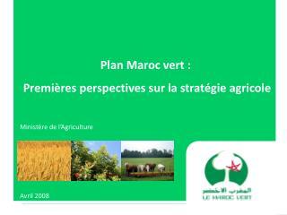 Plan Maroc vert :  Premi res perspectives sur la strat gie agricole