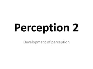 Perception 2
